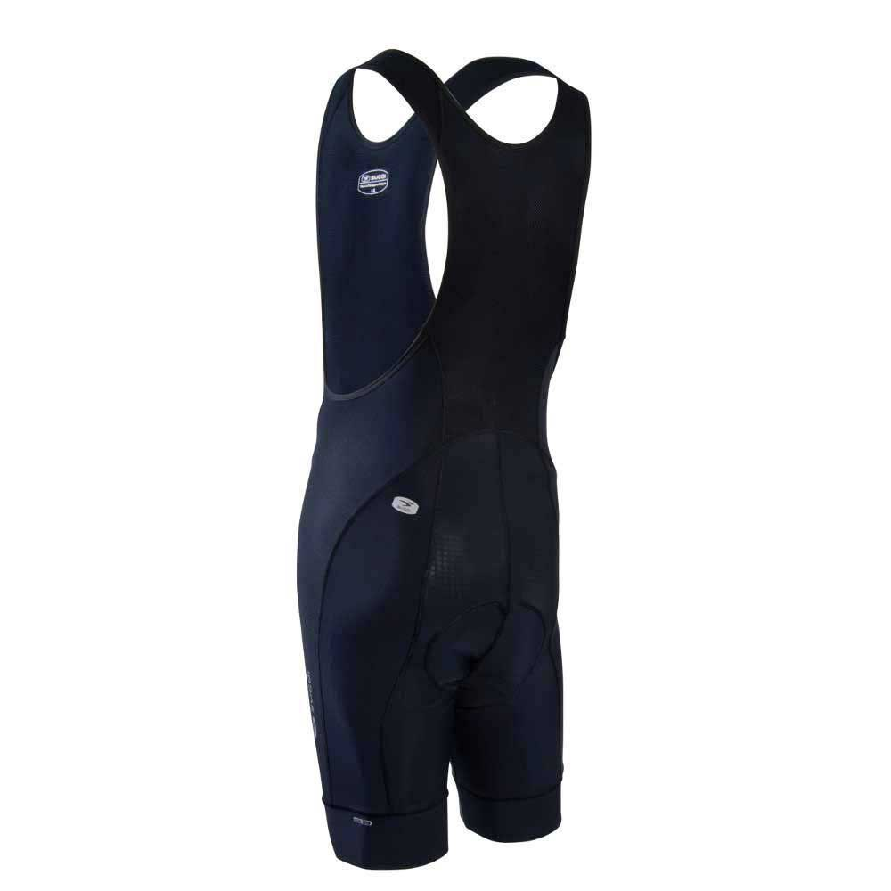 evolution-bib-short