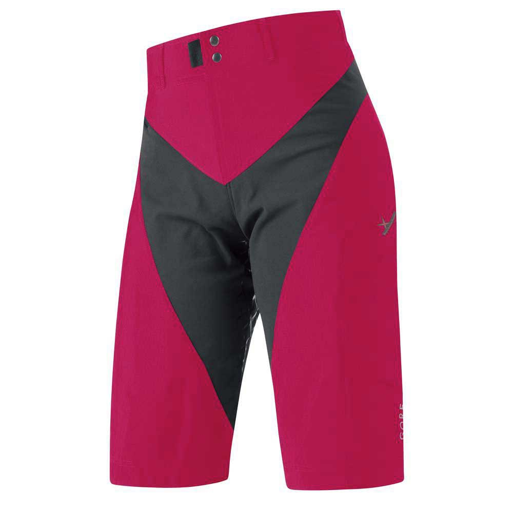 Gore bike wear Alp x Cutting Pant