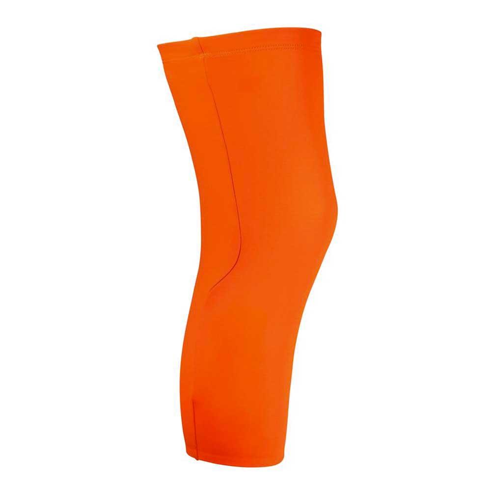 avip-fluo-knees