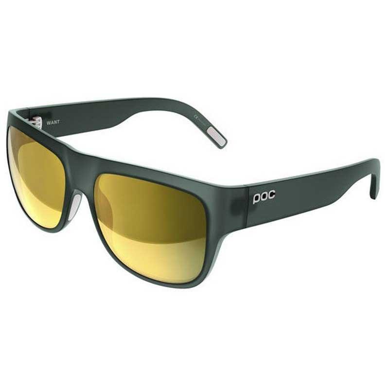 Gafas Poc Want