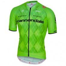 749e097da4f7 Santini UCI Rainbow World Champion Hoodie Fleece Grey
