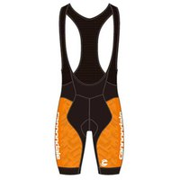 Cannondale Performance 2 Bib Shorts Printed